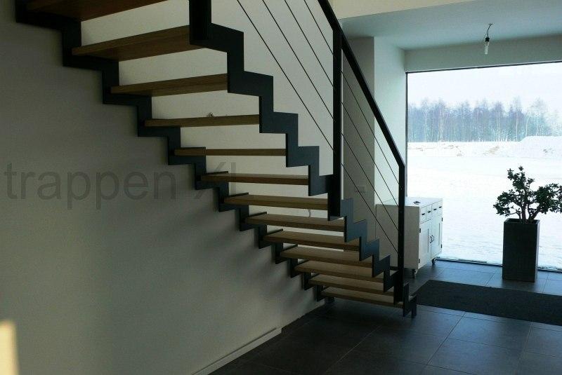 Trappen xl uw trap specialist met design trappen op maat - Metalen trap design hout ...